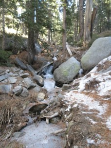 Seven Pines Trail 007