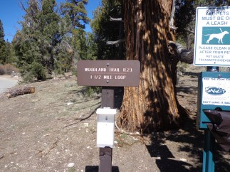 Trail head - look for guide