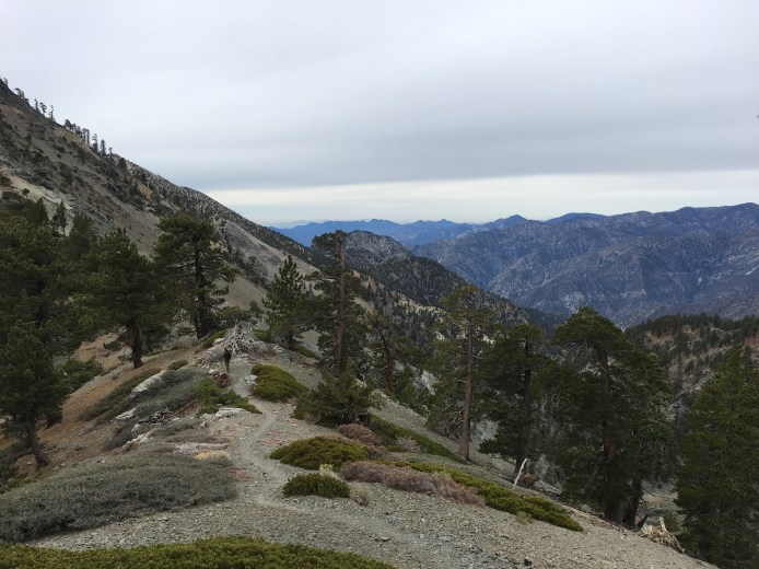 Mt. Baldy via Backbone 013