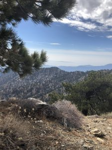 Mt. Hawkins via Dawson Saddle – Angeles National Forest