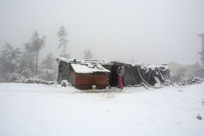 How the other half live in this sub-zero weather