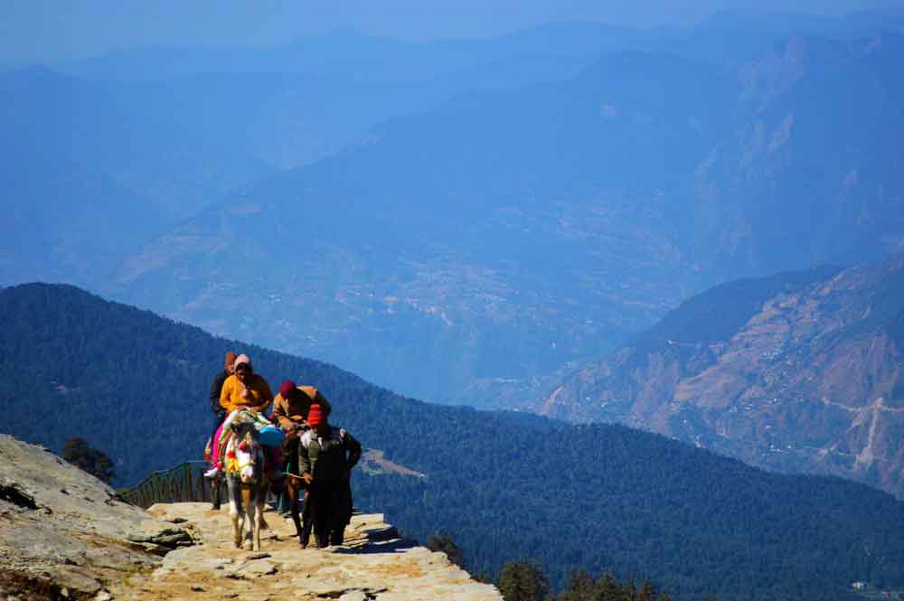 Riding donkeys in Chopta, Uttrakhand, India