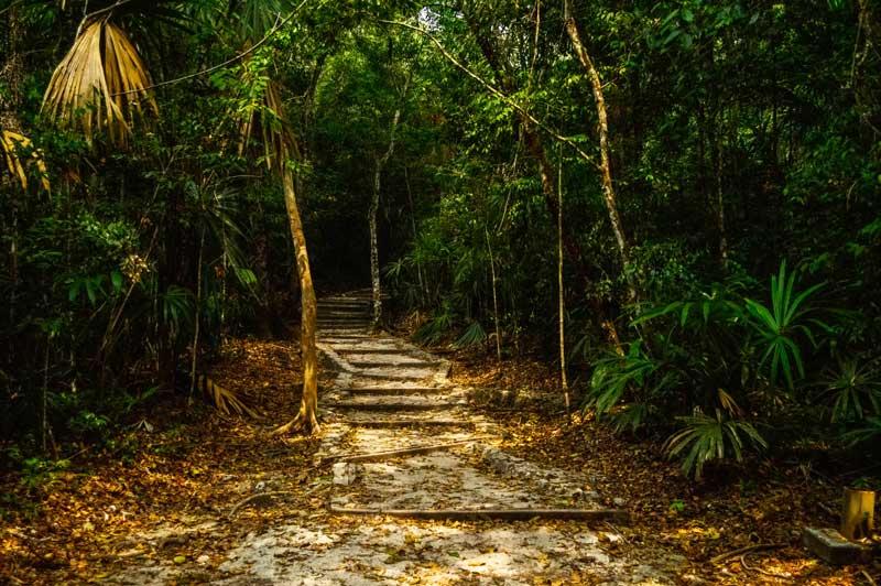 Tikal temple staircase
