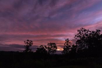 Daybreak on the Twelth