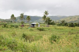 Typical Fijian countryside.