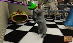 20111012-pets-handson-cats-09