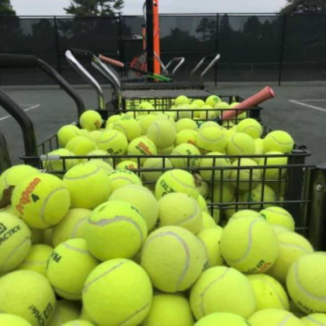 tennis balls in practice baskets