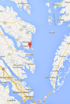 Sampling location in relation to the Chesapeake Bay