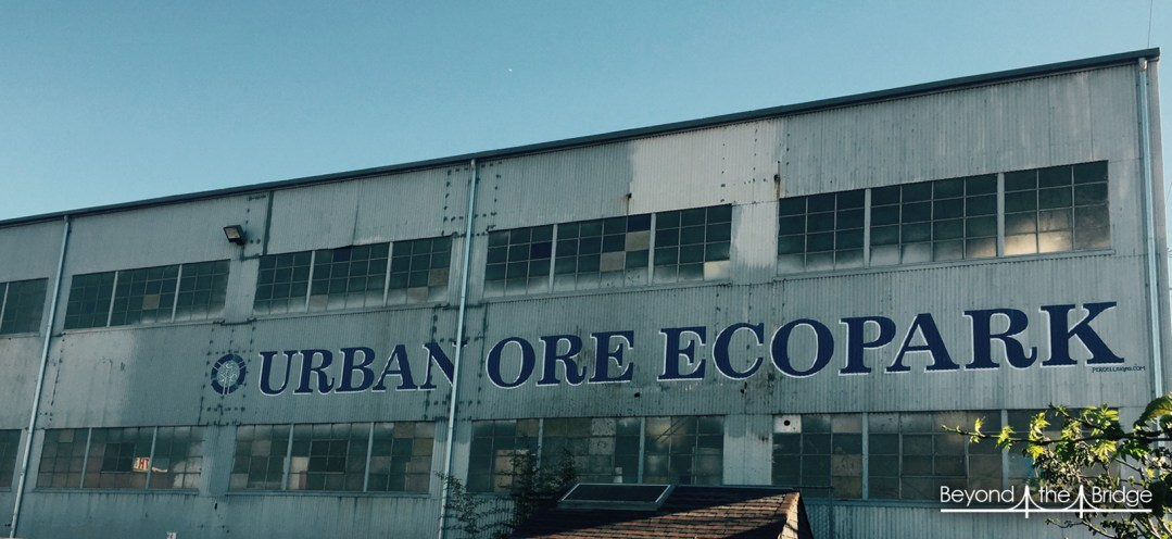 urban-ecopark-8