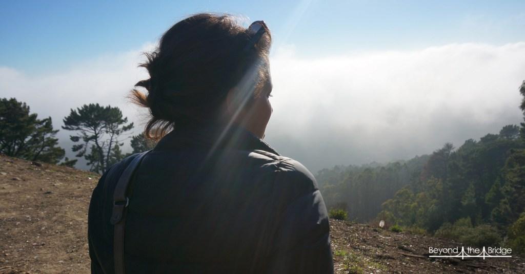 fog-illustr6