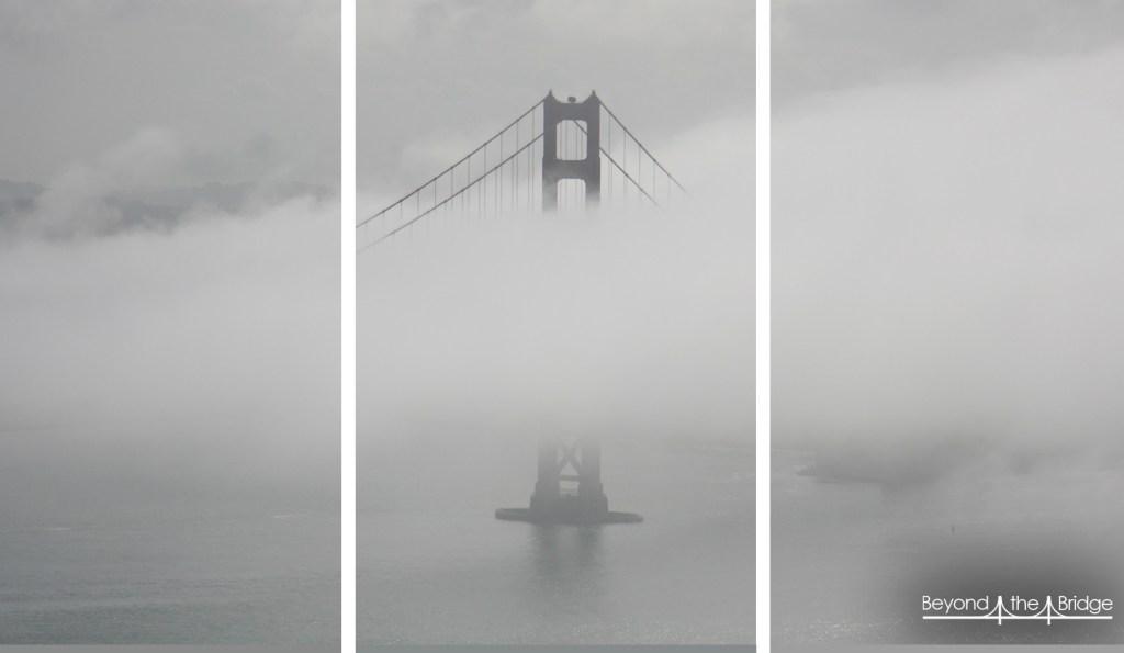 fog-triptic2