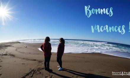Vacances, France, Débranche !