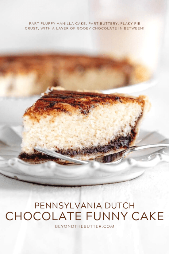 Pennsylvania Dutch Chocolate Funny Cake recipe | All Images © Beyond the Butter, LLC