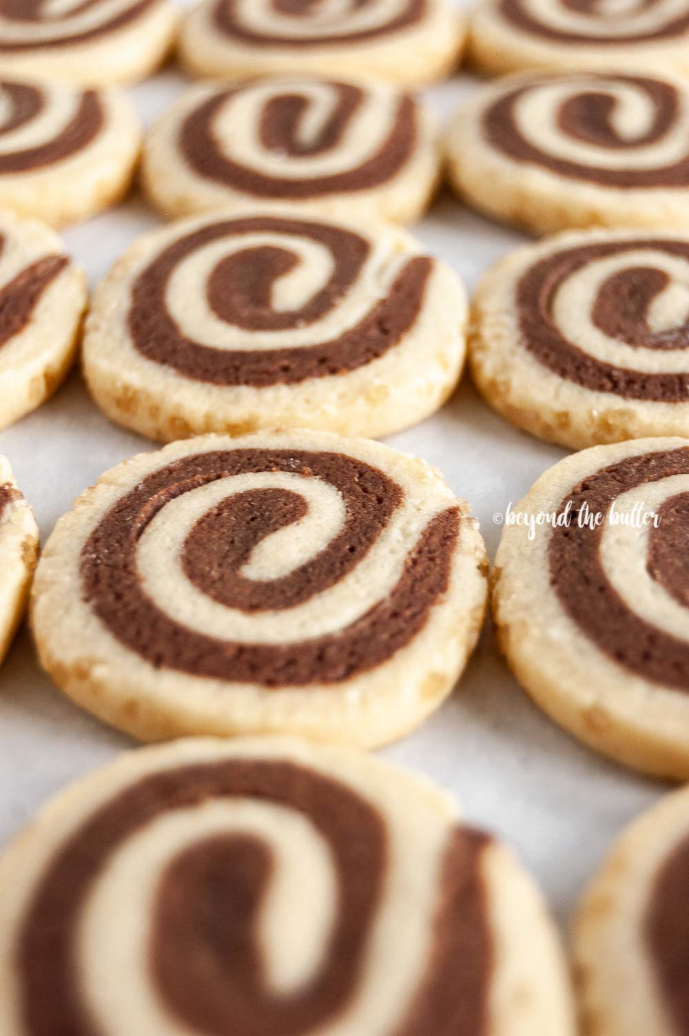 Angled image of Chocolate Pinwheel Cookies in rows | All images © Beyond the Butter™