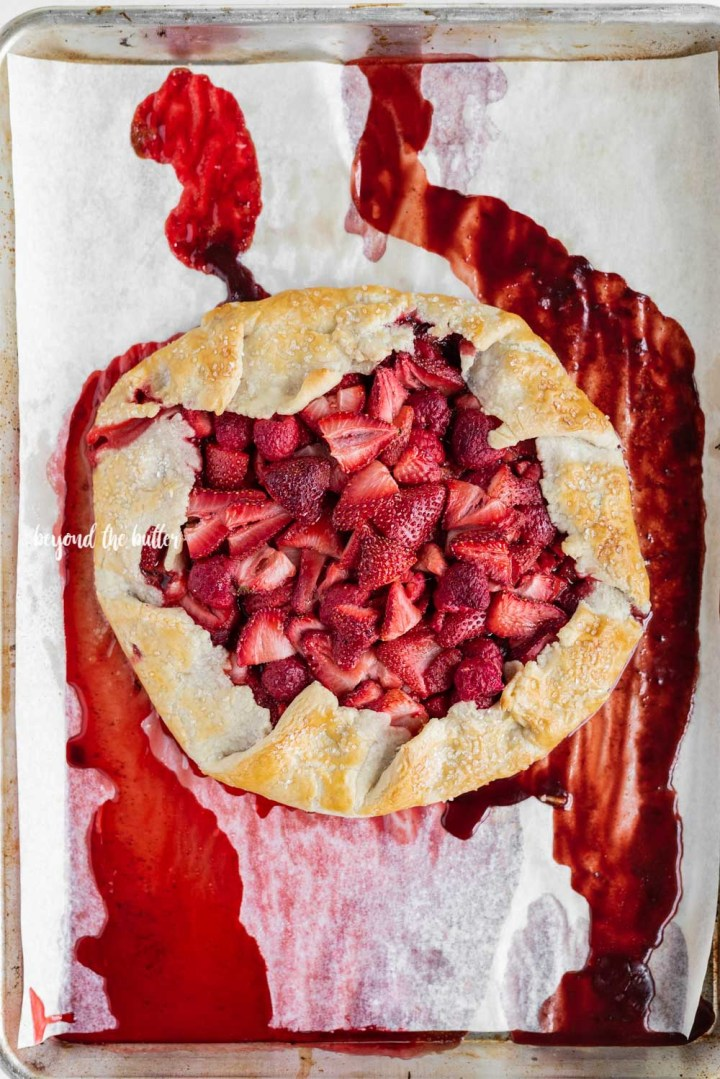 Berry Nutella Galette recipe-5769