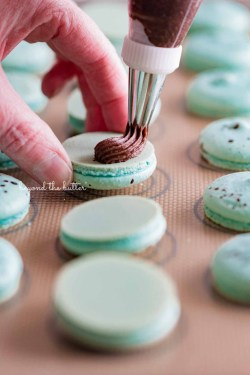 Piping milk chocolate frosting onto robin's egg macaron shells from BeyondtheButter.com | All images © Beyond the Butter®