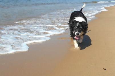 Bilbo Beach