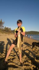 Jonathon shark Umina Beach