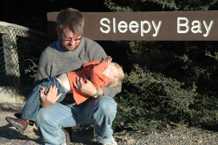 sleepy-bay
