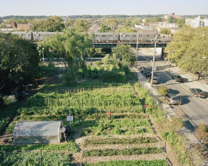 East New York Farms!, Brooklyn