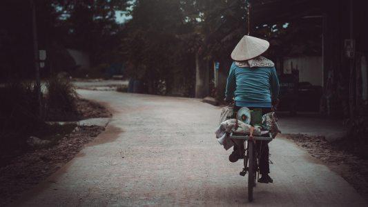 Vietnamese online courses