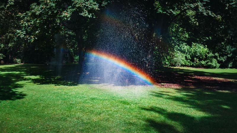 Rainbow- Seeing the Light