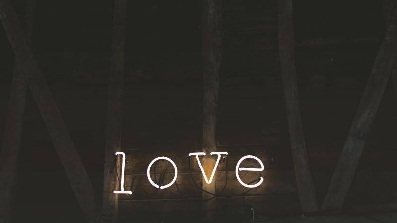 Love is a Flower That Detours a Lot
