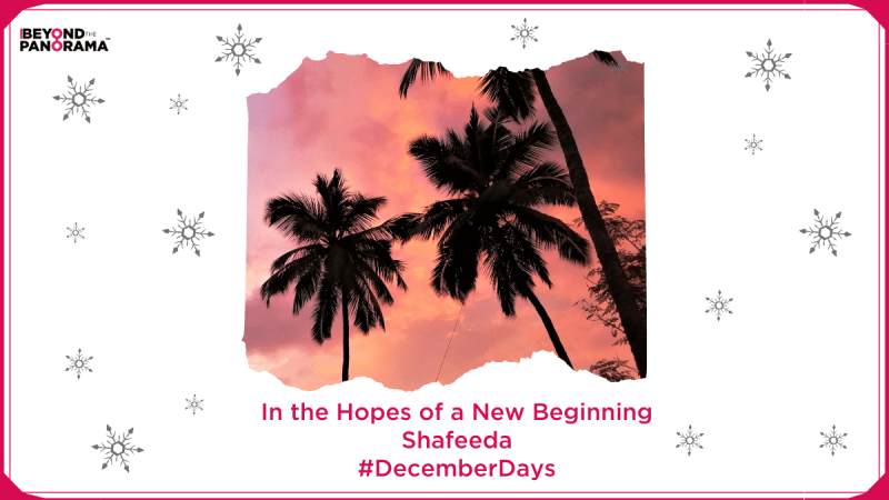 In the Hopes of a New Beginning | Shafeeda