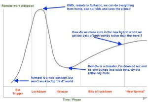 The hype cycle on remote working