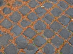 Rome paving & natural debris