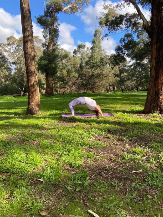 urhdva dhanurasana, wheel pose, yoga, yoga teacher, yoga in camberwell, yoga psychology, meditation, mindfulness, breathing exercises, pranayama, private yoga classes