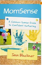 MomSense Book Review and Giveaway 12/8