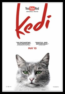KEDI on YouTube Red #Review #Documentary #Cats