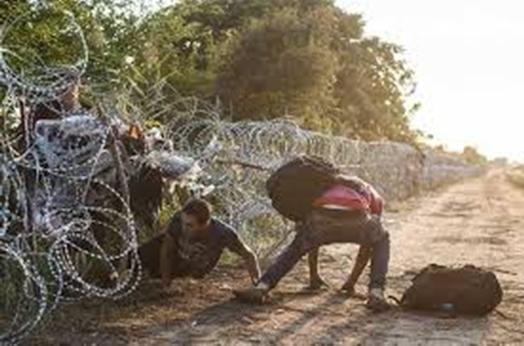 МВР: Оградата по границата с Турция е пробита на четири места