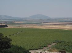 Die Jezreel-Ebene mit dem Tabor im Hintergrund