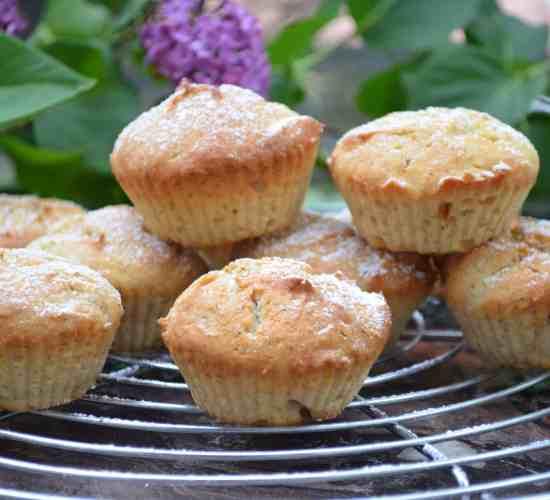 Muffiny s tvarohem