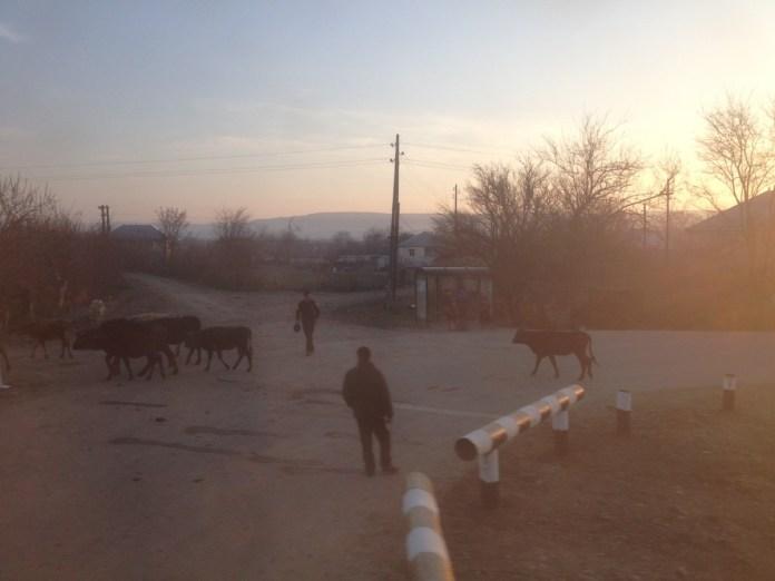 vlakom z azerbajdzanu do gruzinska