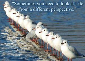 different-perspective