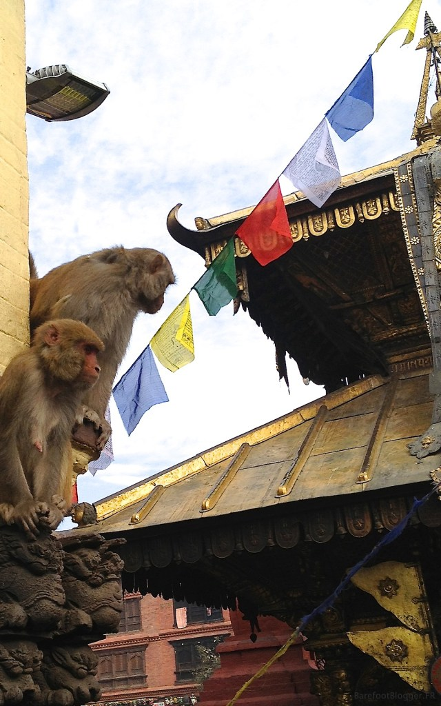 Monkey Temple, Katmandu