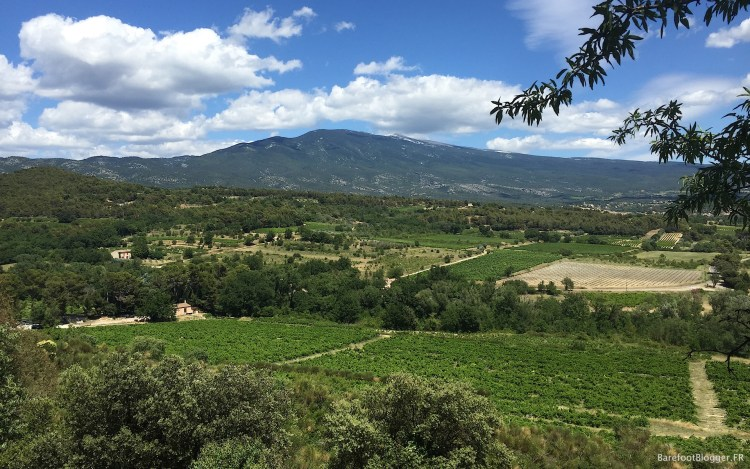 Mount Ventoux viewed from Caromb