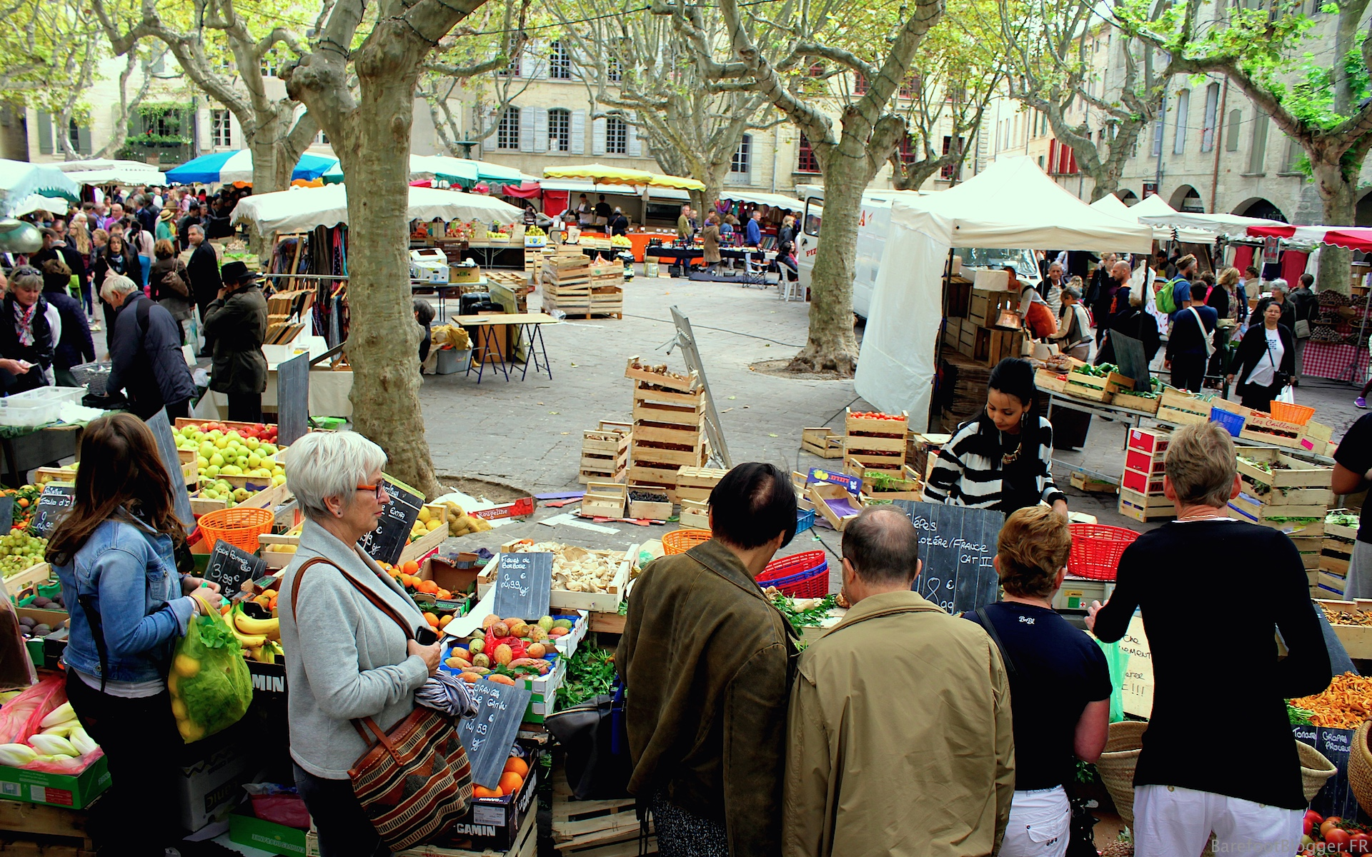 southern france holiday