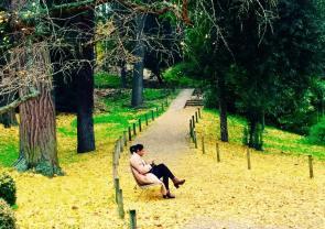 Jardin des Plantes - Beverly T