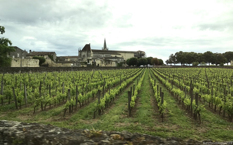 Wine tour Bordeaux
