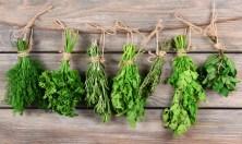 erbe-aromatiche-benefici