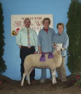791 Ch BFL ewe & best fleece MSWF 2015