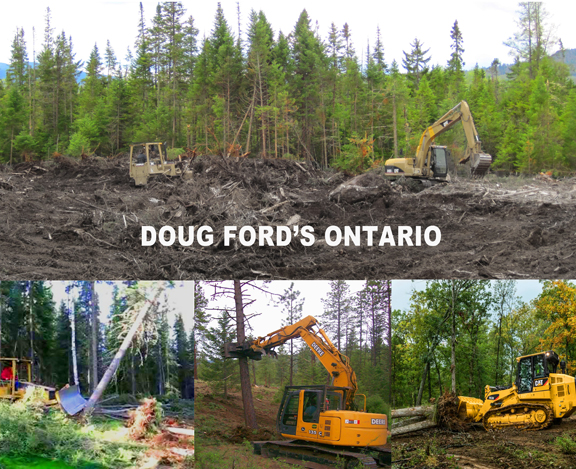 DOUG FORD'S ONTARIO low res
