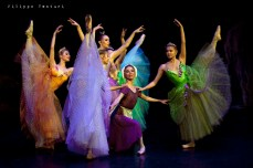 New Classical Ballet of Moscow, Cinderella, photo 8
