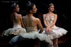 Balletto di Mosca, La bella addormentata, foto 18