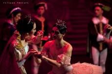 Balletto di Mosca, La bella addormentata, foto 27