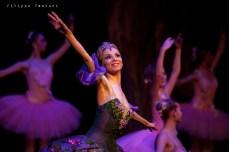 Balletto di Mosca, La bella addormentata, foto 39
